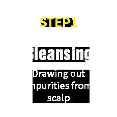 HairRepro STEP01 Cleansing