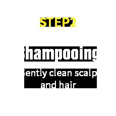 HairRepro STEP02 Shampooing