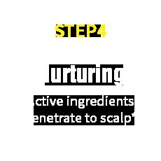 HairRepro STEP04 Nurturing