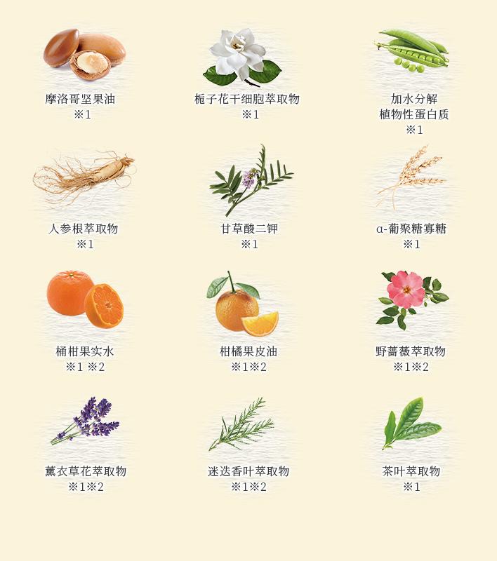 温和呵护你的秀发的12种植物成分