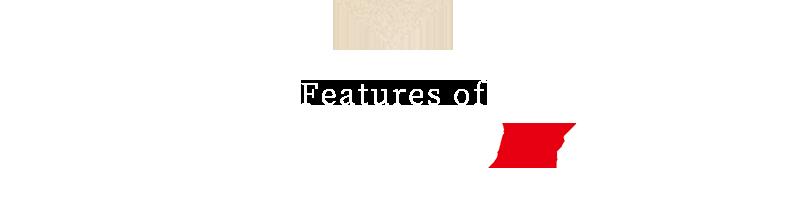 Features of HairPlus SPEED E Premium