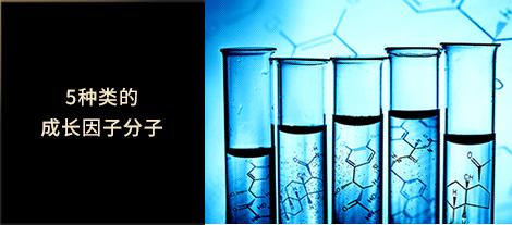 5种类的成长因子分子